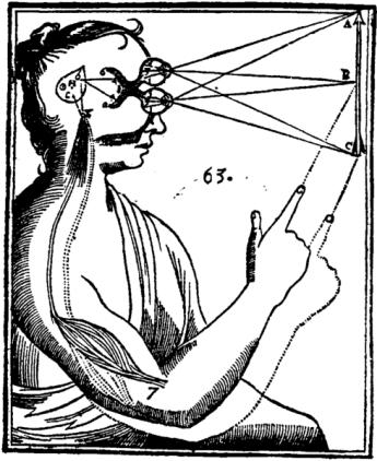 Descartes diagram.